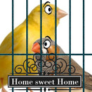 Finch_Canary_Cage_Final_3.jpg